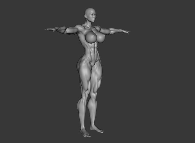 3d model female template body builder muscle ripped