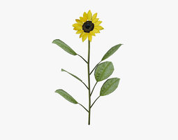 3D model low-poly Sunflower