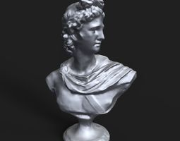 Apollo Belvedere bust 3D printable model