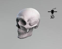 3D printable model human skull