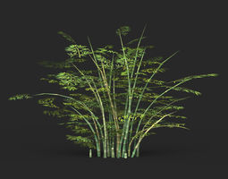 3D asset Game Ready Bamboo Tree 02
