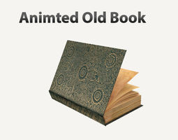 Old Book Rigged 3D