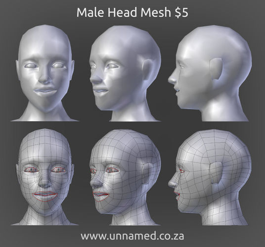 male head model 3d model obj 3ds fbx blend dae 1