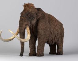Mammoth Maya 3D model