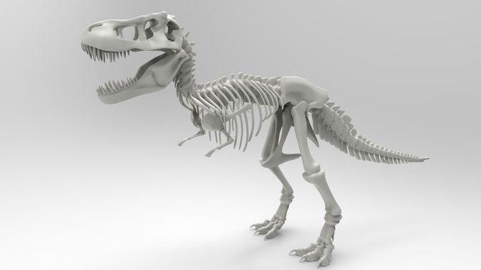tyrannosaurus rex skeleton 3d model obj stl 1