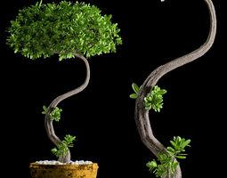 3D miniature plant 146
