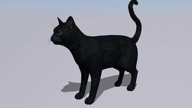 black cat rigged and gift 3d model low-poly rigged obj mtl 3ds fbx c4d dxf stl 1