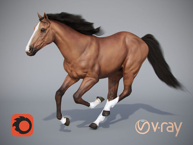 horse 3d model max obj mtl fbx tga 1