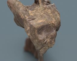 3D model Dancing Brown Rock