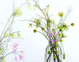Twigs bouquet 3D model