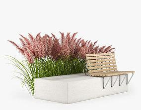 3D leaf Pink Pampas Grass Seeds