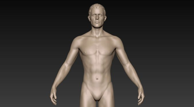 male basemesh 01 3d model obj ztl 1