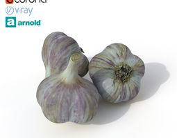 vegetable Garlic 3D