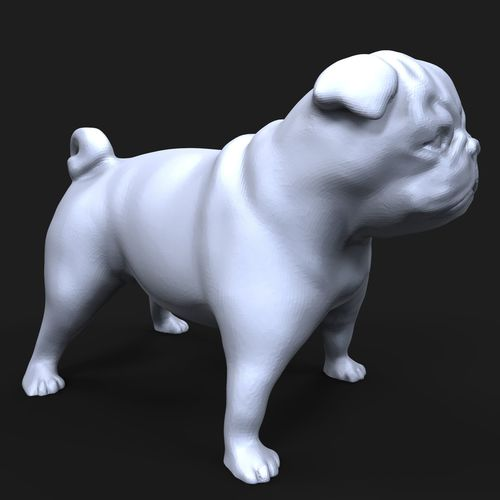 pug dog 3d model obj mtl stl ztl 1
