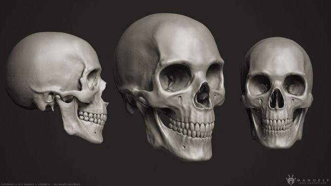 3d human skull 3d model obj mtl 1