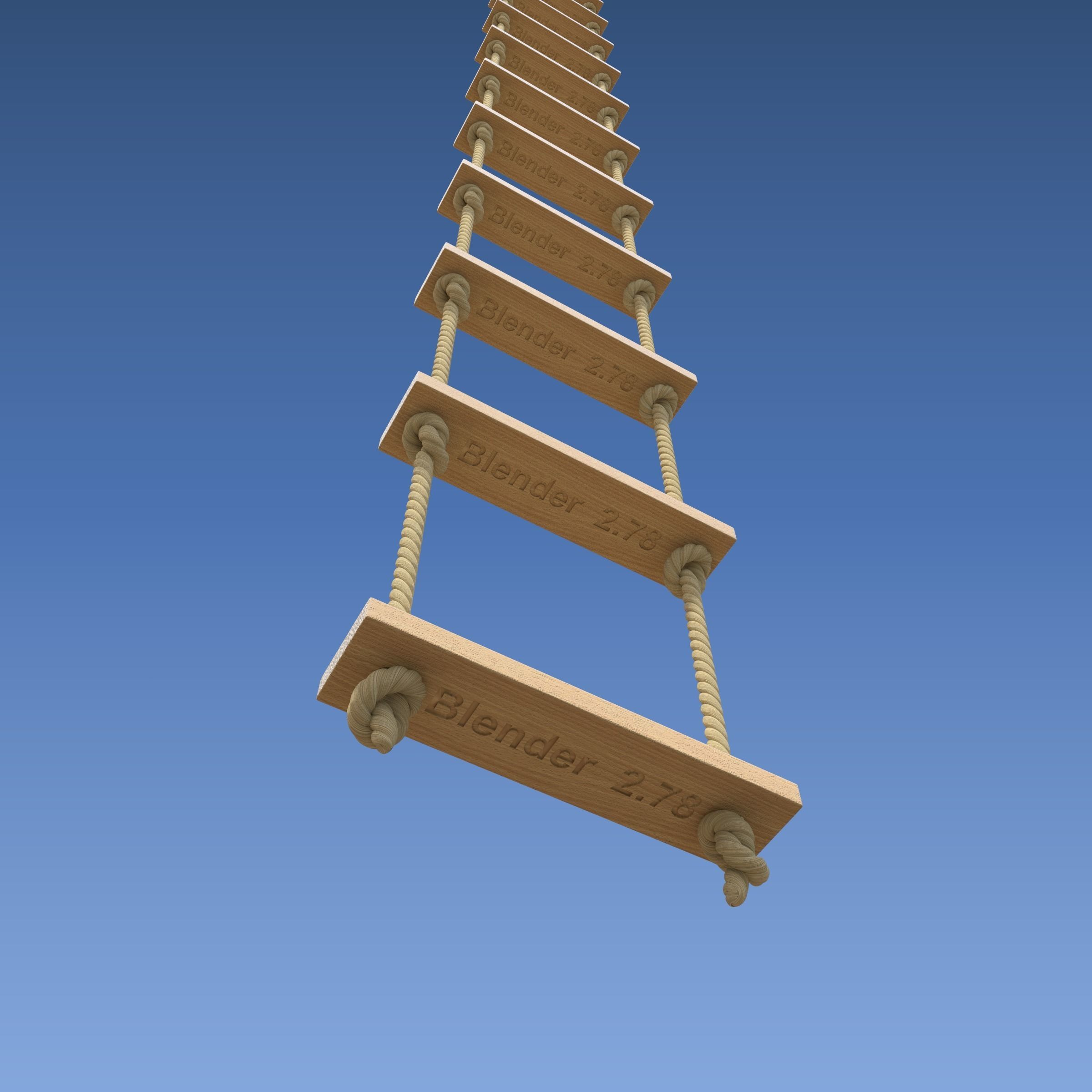 Rope Ladder 3D Model