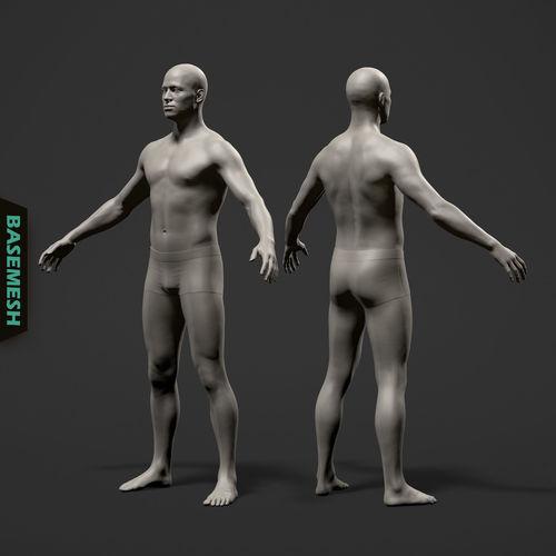 average male body basemesh 3d model ztl 1