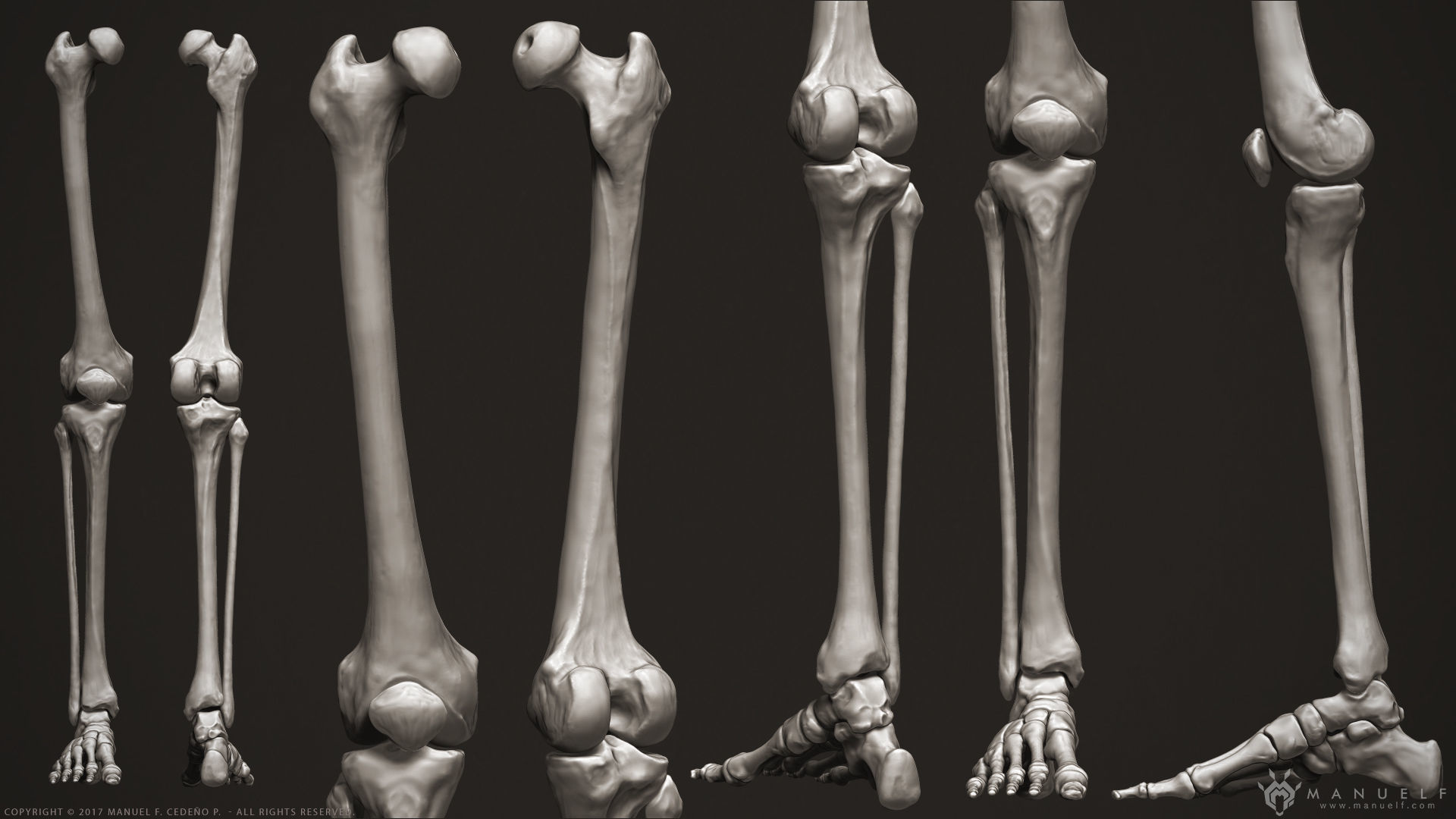 Amazing Picture Of Leg Bones Ornament Chord Guitar Piano Bass Song