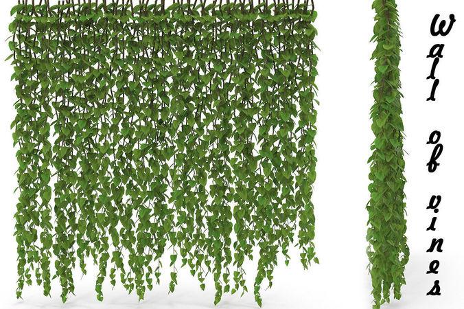 3d wall of vines cgtrader. Black Bedroom Furniture Sets. Home Design Ideas