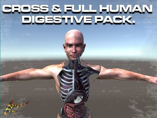 CROSS AND FULL DIGESTIVE PACK