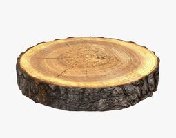 3D Wood Log Slice