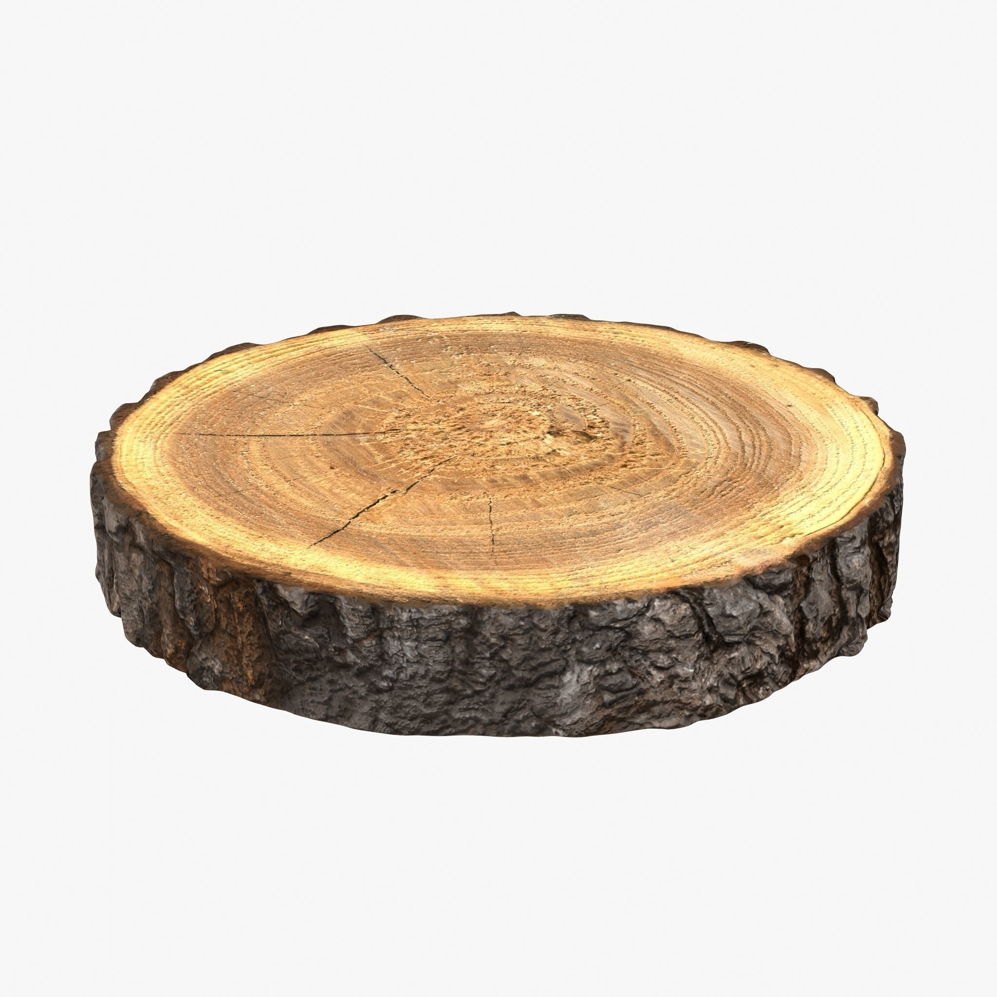 Wood Log Slice