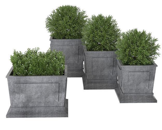 plant 01 3d model max obj mtl 3ds fbx mat 1