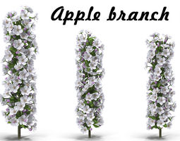 Apple branch 1 3D model
