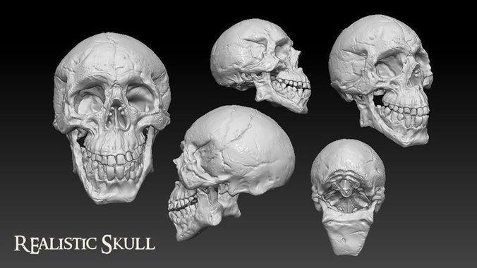 skull 3d model obj mtl ztl 1