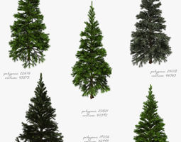 Tree fir 3D model realtime