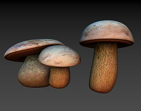 3D model Mushrooms Boletus luridus