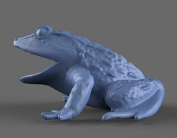 3D Frog Toy