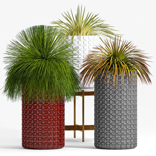 Decorative plant set-40