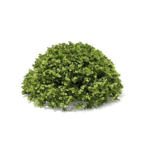 Half-Sphere Hedge