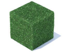3D Cube Shaped Hedge