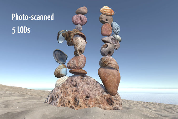 Beach Rocks and Shells