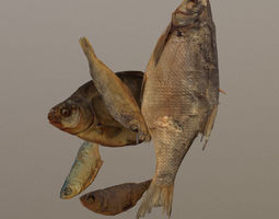 3D model game-ready Scanned photorealistic dried fish