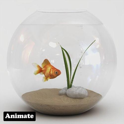 golden fish bowl  3d model animated max obj mtl 3ds ma mb tga 1