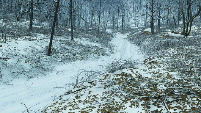forest winter in vue 3d model vue 1