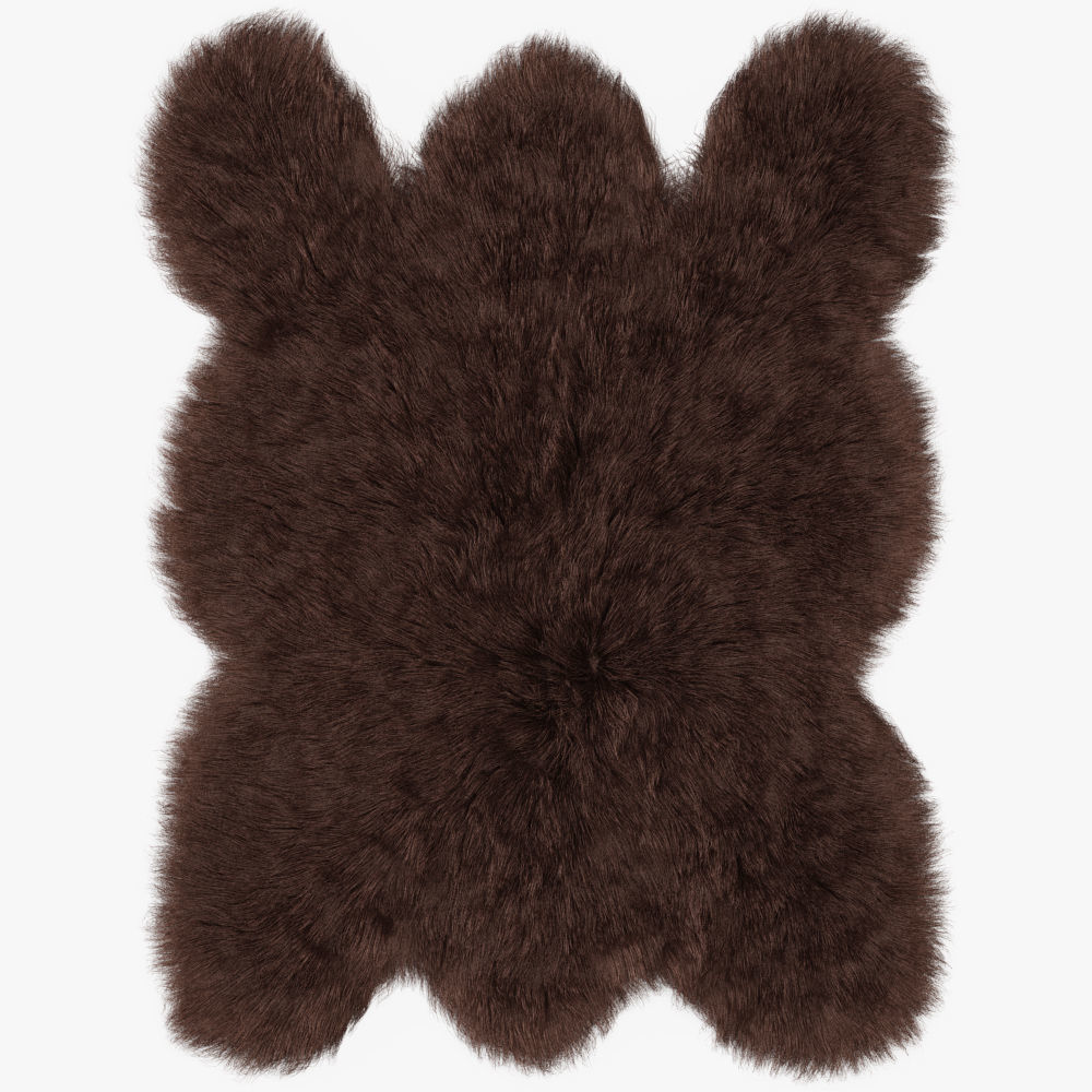 ad taxidermy black city classified victoria bear rug