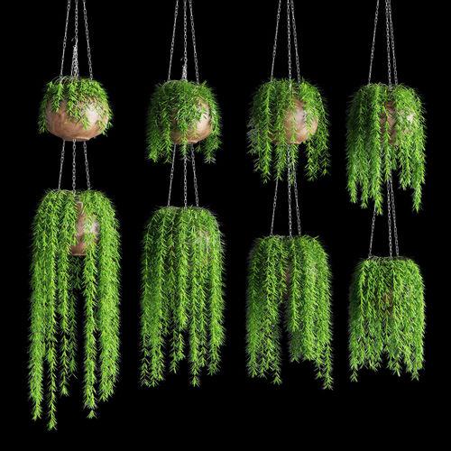 hanging plants in pots on a chain 8 models 3d model max obj mtl fbx unitypackage prefab 1