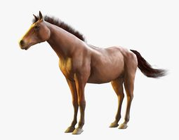Horse Textured 3D asset game-ready