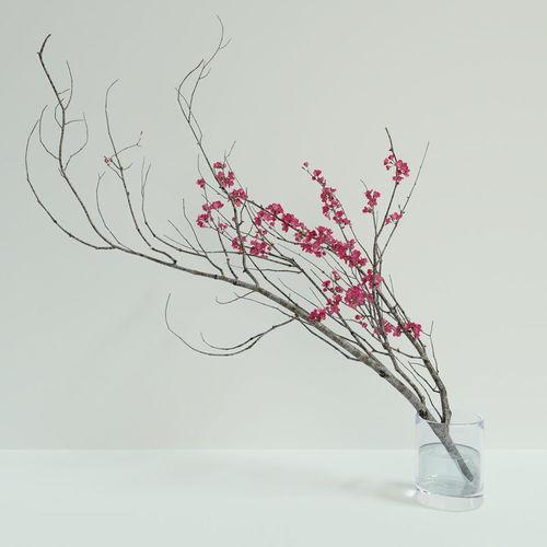 decorative branch with flowers of sakura 3d model max obj mtl fbx blend 1