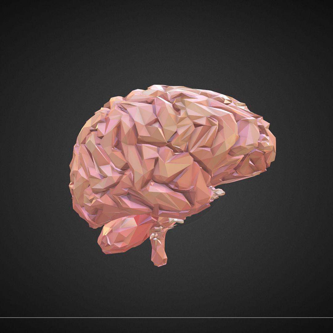 Low Polygon Art Medical Brain Real