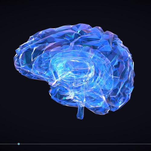 low polygon art medical brain roentgen 3d model low-poly animated max obj mtl 3ds fbx ma mb tga 1