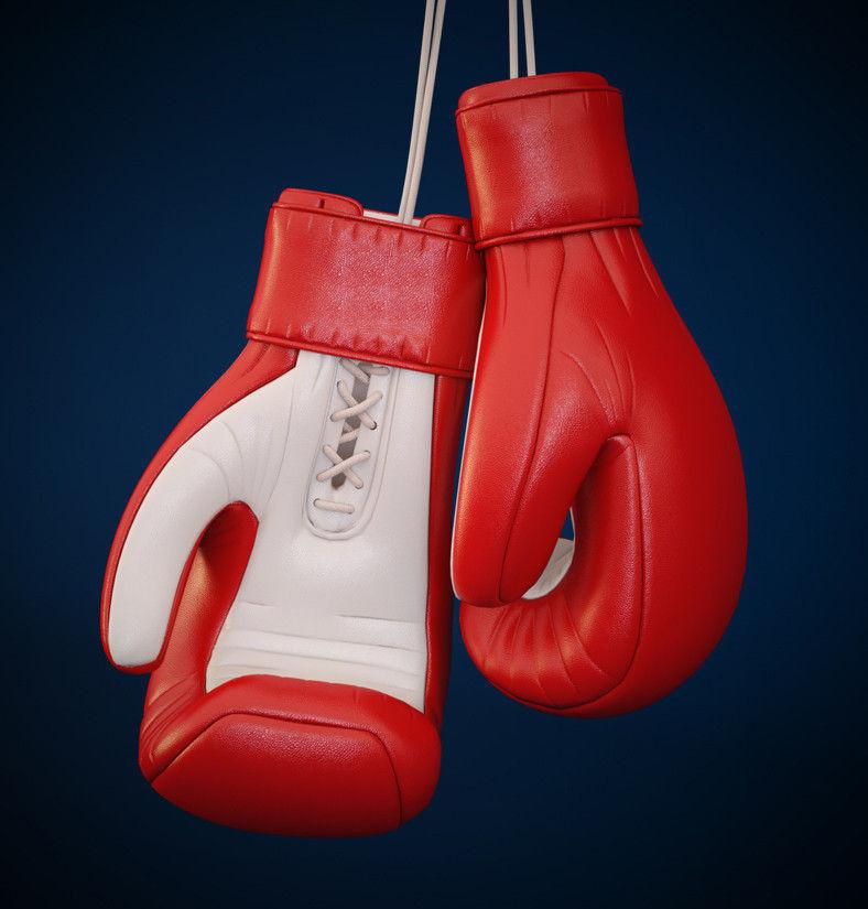 Image result for Boxing Gloves