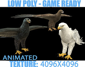 3D asset Eagle Animated
