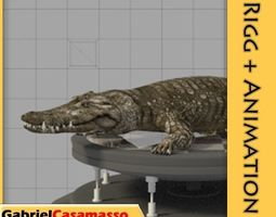 3D model animated Crocodile