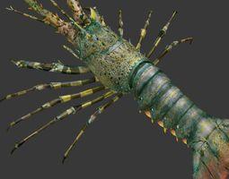 lobster Australian lobster 3D asset