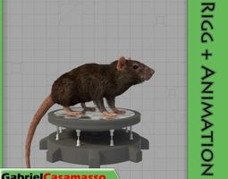 3D model Common Rat